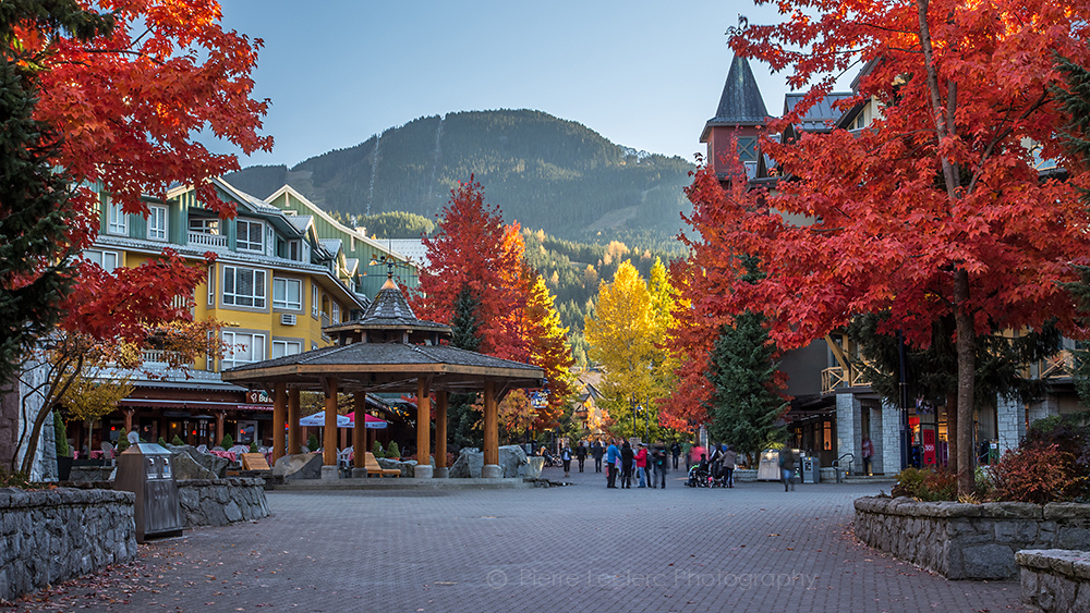 fall in whistler (1)