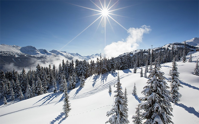 favourite whistler blackcomb ski runs